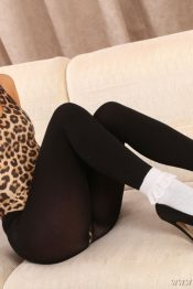 Only Opaques Gina B pantyhose
